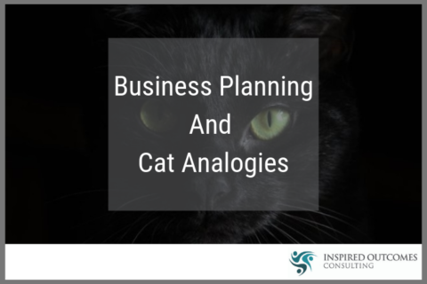 Business Planning And Cat Analogies